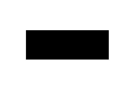 pentilogo copy